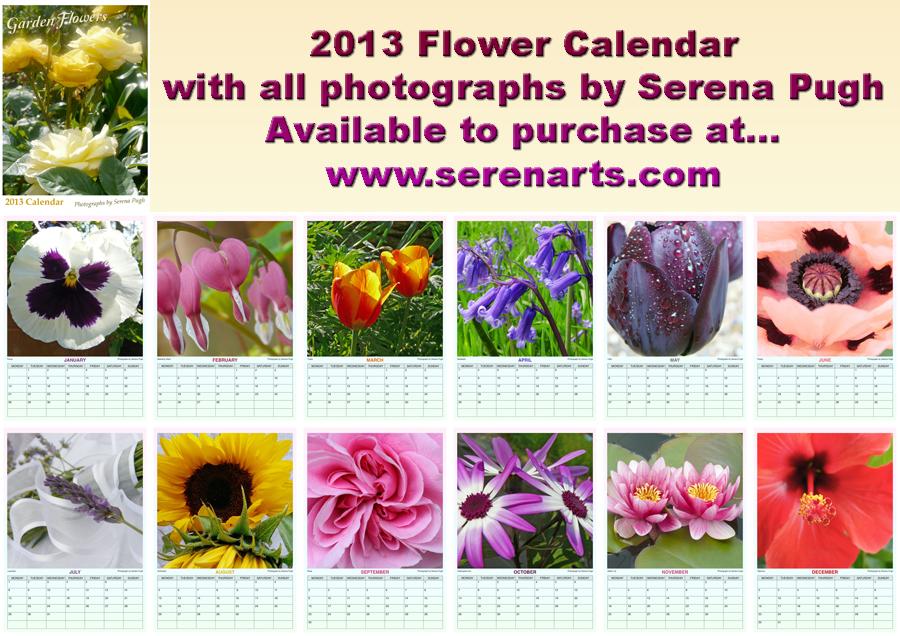 2013 Flower Calendar by Serena Pugh