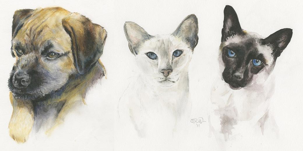 SerenArts Gallery Pet Portraits