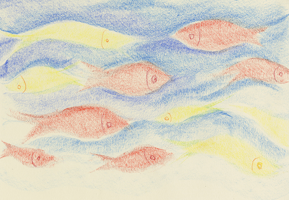pastel drawing of fish by derek fuller