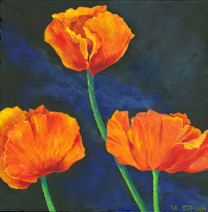 Poppies by Serena Pugh