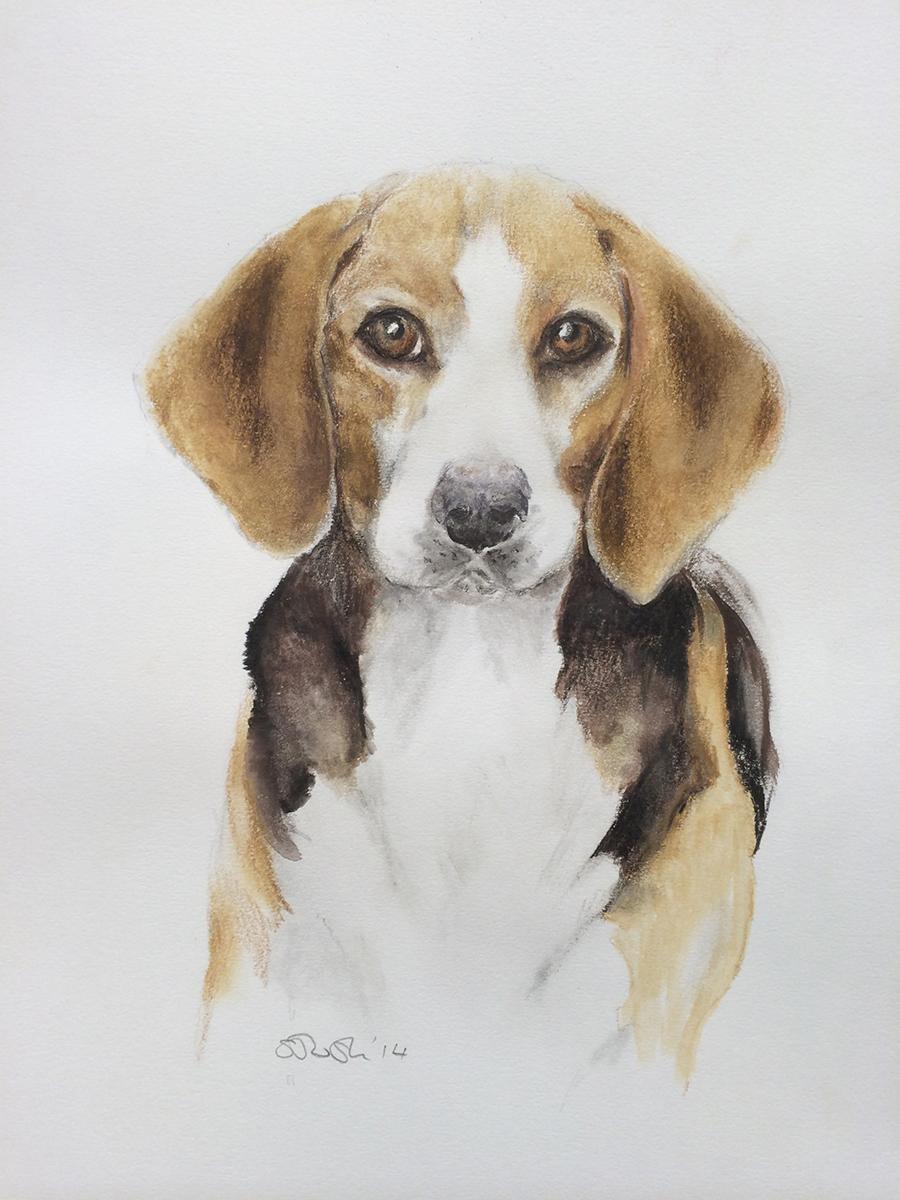 A pet portrait by Serena Pugh