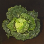 Savoy Cabbage by Jane Robinson