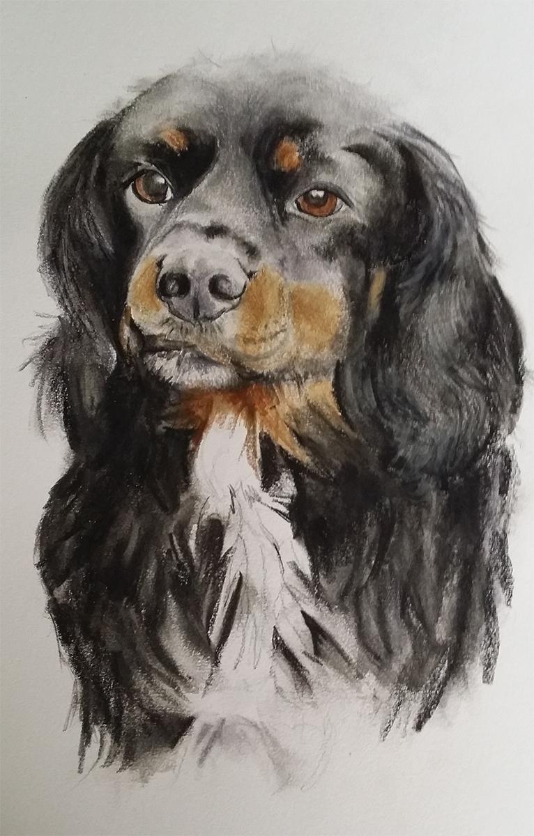 serena pugh pet portrait