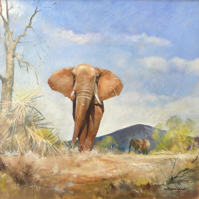 steve hall elephant oil painting