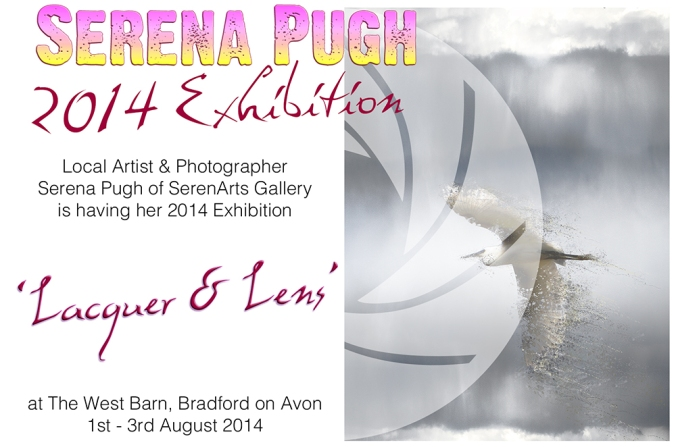 serena pugh 2014 exhibition - lacquer and lens 1
