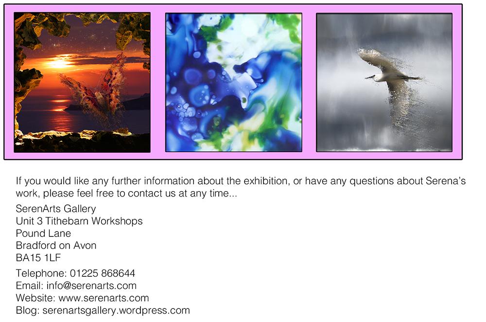 serena pugh 2014 exhibition - lacquer and lens 2