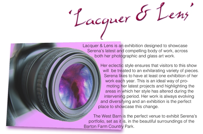serena pugh 2014 exhibition - lacquer and lens 3