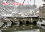 serenarts gallery christmas card
