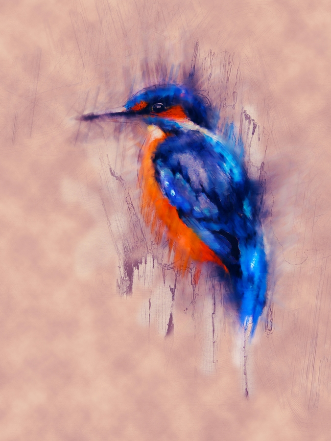 watchful kingfisher by serena pugh