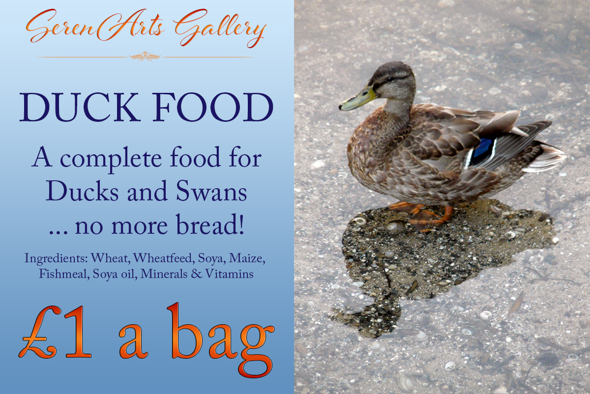 healthy-duck-food-from-serenarts-gallery