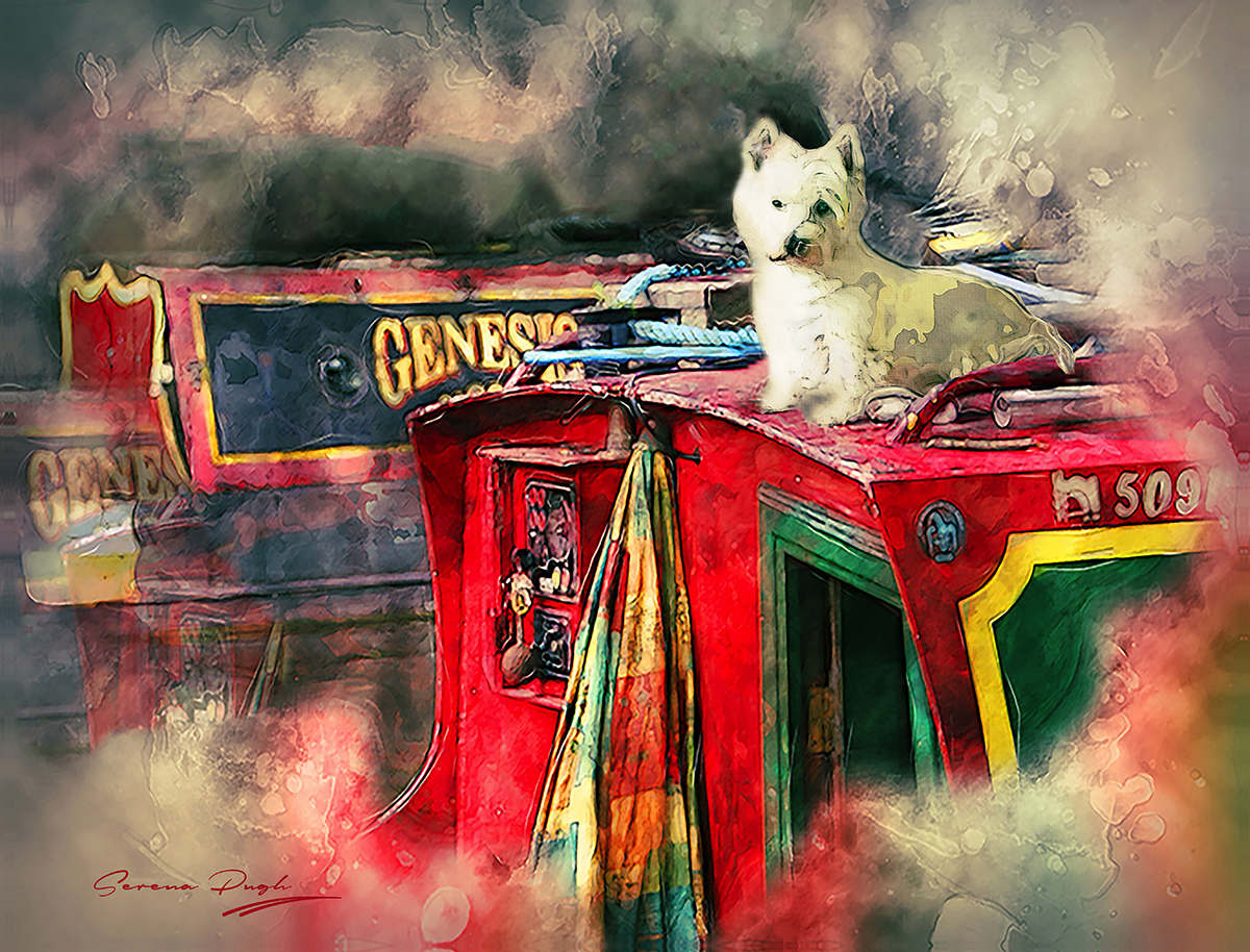serenarts-gallery-photographic-art-commissions