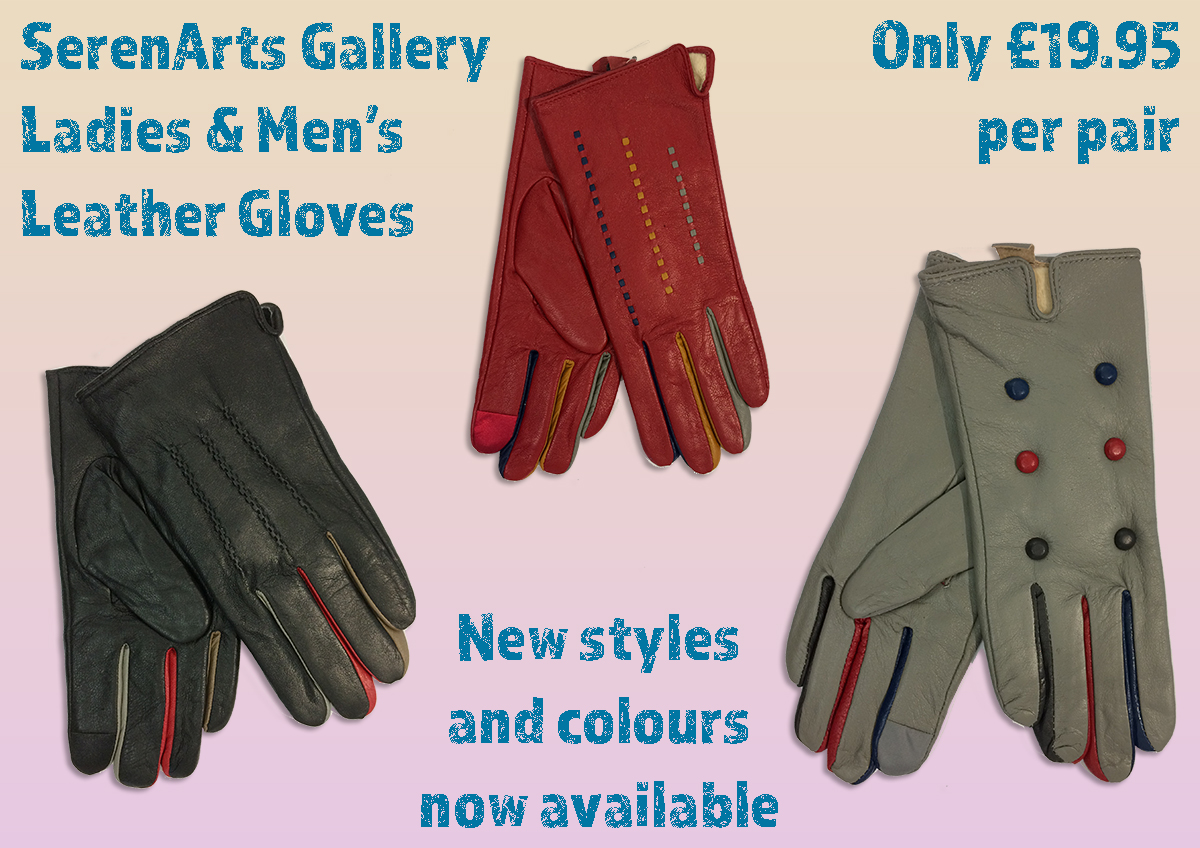 serenarts gallery new leather gloves