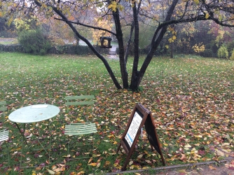 serenarts gallery autumnal rain