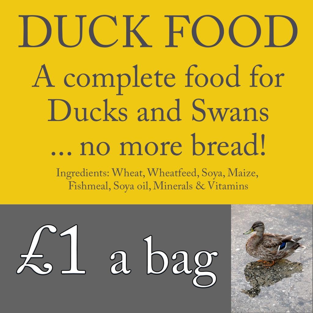 serenarts gallery swan and duck food
